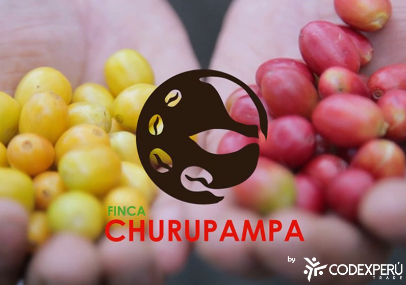 Video Promocional - Finca Churupampa Perú S.A.C.